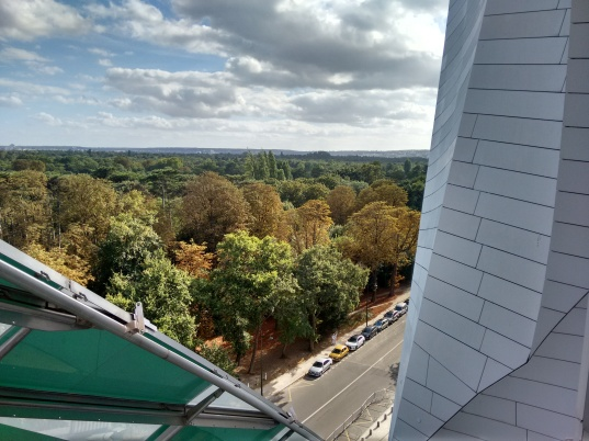 The view from the building's terrace.