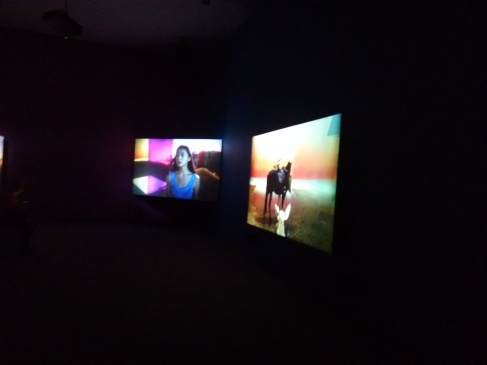 A lot of art was showcased in the form of cinema, which was displayed on multiple screens.