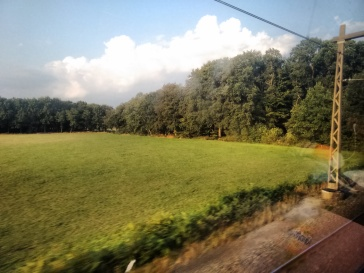 In the train.
